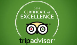 CERTIFICATE OF EXCELLENCE!