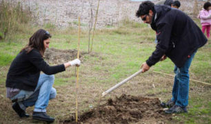 VOLUNTEER TREE PLANTING